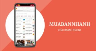 Kinh doanh online MuaBanNhanh
